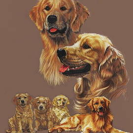 Golden Retriever  by Barbara Keith