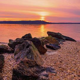 Golden Sunset by Sandi Kroll