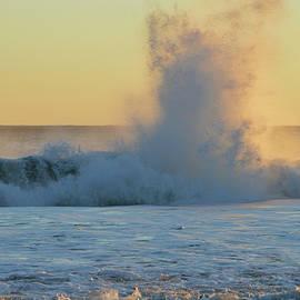 When Waves Collide  by Dianne Cowen