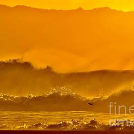 Golden Waves of Ke Iki Beach  by Debra Banks
