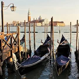 Gondolas In Venice by Abrahan Fraga