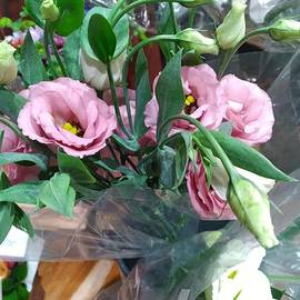 Gorgeous Pink Lisanthus Flowers by Charlotte Gray