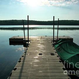 Gouldsboro State Park Dock by Dale Kohler