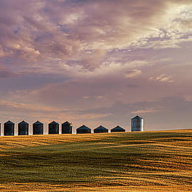 Grain Bins All In A Row by Philip Rispin