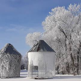 Grain Bins in Frost and Vines by James Peterson
