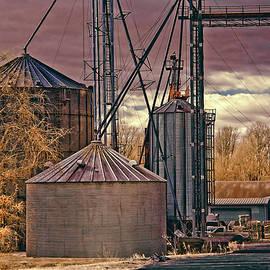 Grain Storage by Anthony M Davis