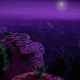 Grand Canyon Stars by Chance Kafka