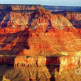 Grand Canyon Vista At Dwan by Douglas Taylor