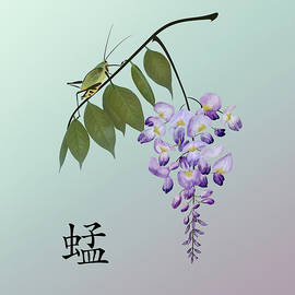 Grasshopper and Wisteria by Spadecaller