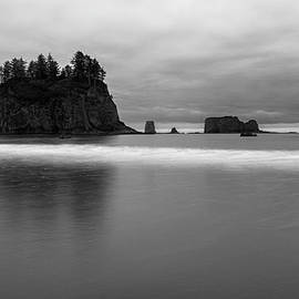 Gray dawn monochrome - Washington coastline by Murray Rudd