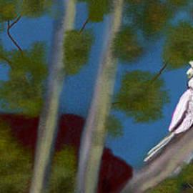 Great Aussie Bush Bird name Eddie by Julie Grimshaw
