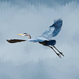 Great Blue Heron Liftoff by Marlin and Laura Hum