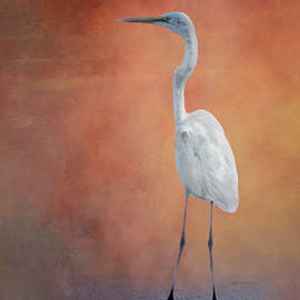 Great Egret by Richard Smith