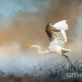 Great Egret Taking Off by John Bartelt