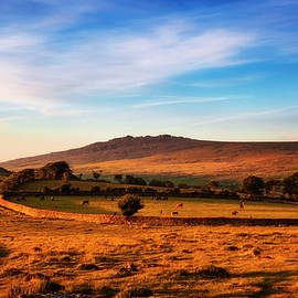 Great Staple Tor, Dartmoor. by Maggie McCall