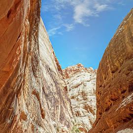 Grand Wash Capitol Reef National Park Utah II by Joan Carroll