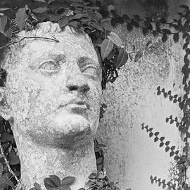 Greek in the Garden