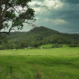 Green field by Kerry LeBoutillier