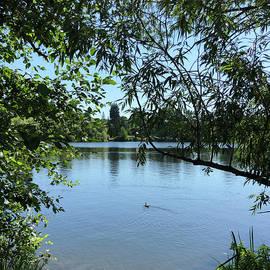 Green Lake by Sierra Vance