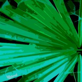 Green Palm Frond by Terri L Parker