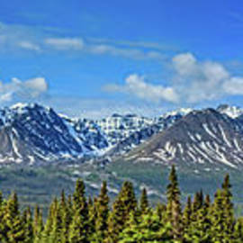 Haines Junction View by Robert Bales