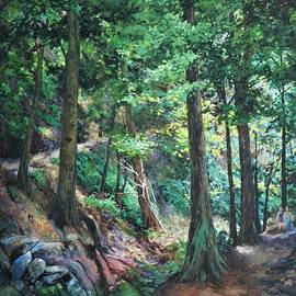 Hairpin Trail, Mont St. Hilaire by Rose Wark