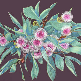 Hakea Flowers - pastel painting by Alison A Murphy