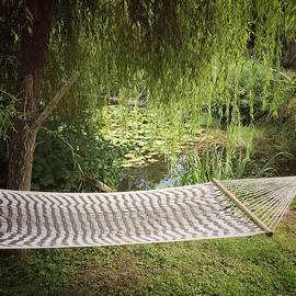 Hammock By The Pond by Maria Janicki