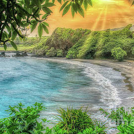 Hamoa Beach Maui by Michele Hancock