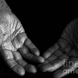 Hand of a Old Woman