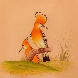 Handmade Hoopoe Bird Finest Delicate Miniature Painting on Paper  by University Of Arts