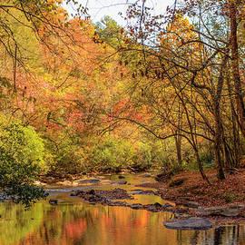 Hanging Dog Creek #3 by Lorraine Baum