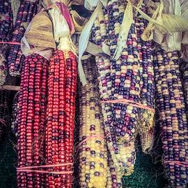 Hanging Indian Corn by Sage Photography