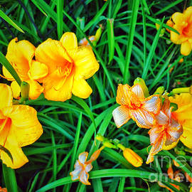 Happy Easter - Welcome Spring by Miriam Danar