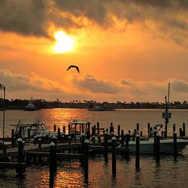 Harbor Life by Rick Davis