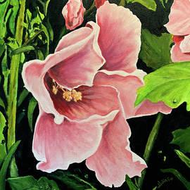 Hardy Hibiscus by Alan Lakin