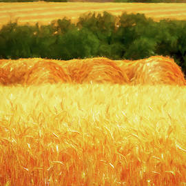 Harvest time in Idaho by Tatiana Travelways