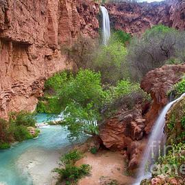 Havasu Creek Arizona 3 by Bob Christopher