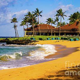 Hawaiian Beach - #shotsfromhawaii by DRD Images
