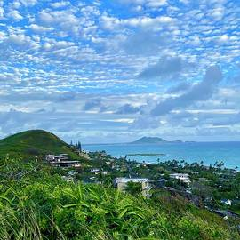 Hawaiian Blue and Green by Beth Saffer