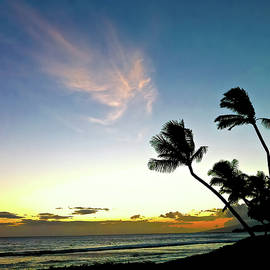 Hawaiian Sunset Clouds Palm Trees Ocean Beach