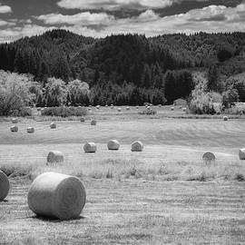 Hay Bales 02 by Mike Penney