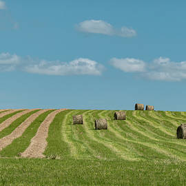Hay Bales In A Summer Field by Karen Rispin