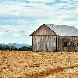 Hay Making Time 2 by Beautiful Oregon