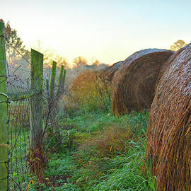 Haybales And Frost by Robert Tubesing