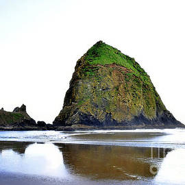 Haystack Rock - Northeast Face by Scott Cameron
