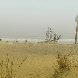 Hazy Beach Day by Kathi Isserman