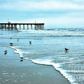 Hazy Day Breakfast Time at the Beach by Regina Geoghan
