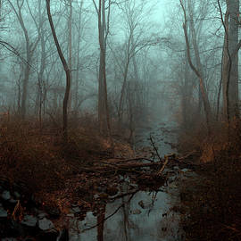 Hazy Stream by Denise Harty