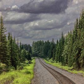 Headed to Denali By Train, Vertical by Marcy Wielfaert